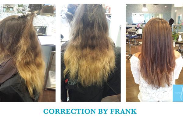 FRANK CORRECTION